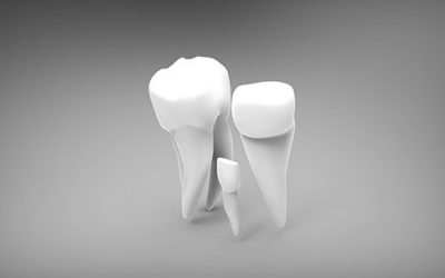 endodoncistas burjassot,